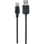 Cable de carga y sincronización Lightning a USB - 10 pies